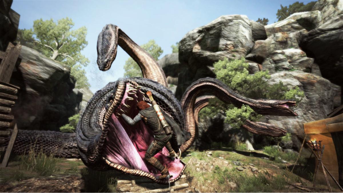 Dragon's Dogma problemy 2