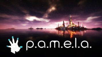 P.A.M.E.L.A. wymagania
